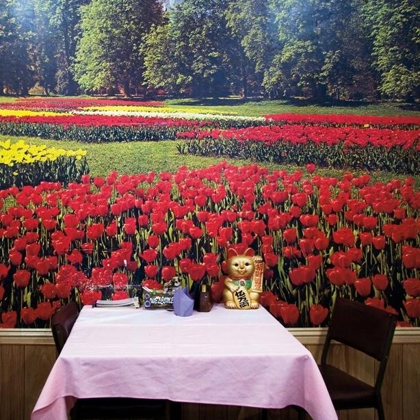 Garden Chinese Restaurant image