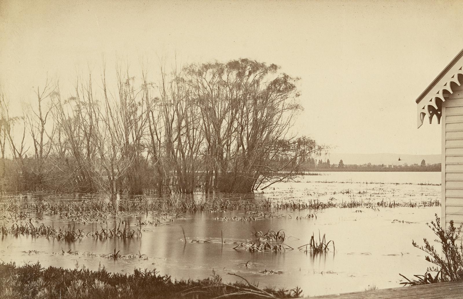 Winter scene, Lake Wendouree, from Botanic Gardens, Ballarat c.1866–88   image