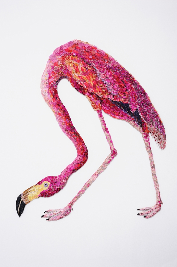 Flaming Flamingo  2011 image