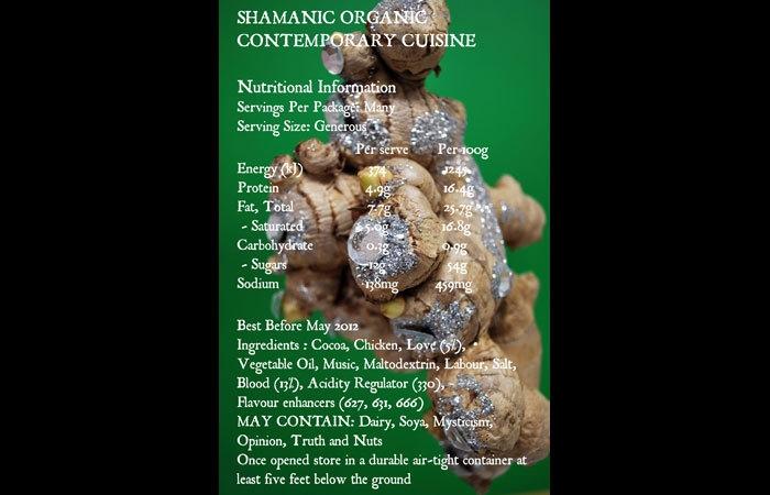 Shamanic Organic Contemporary Cuisine image