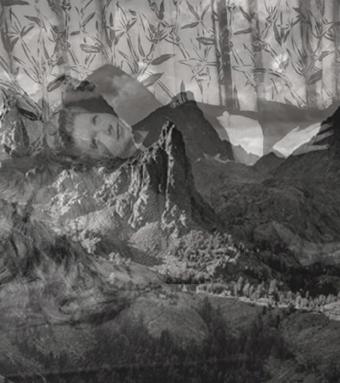 BETTINA HAMILTON: Chrestomathy image