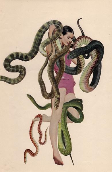 Woman Vs Wild image
