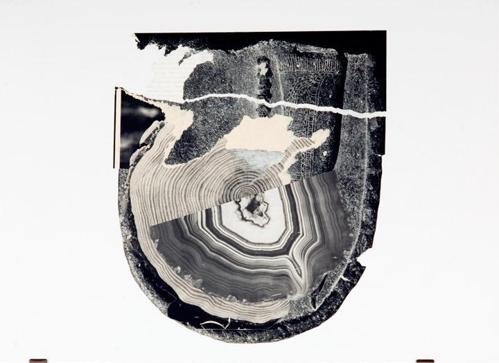 Flohetrauling image