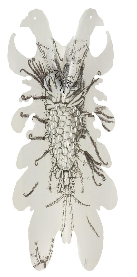 Suspended Anima- 1 image