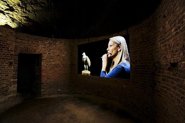 Raptor's Rapture image
