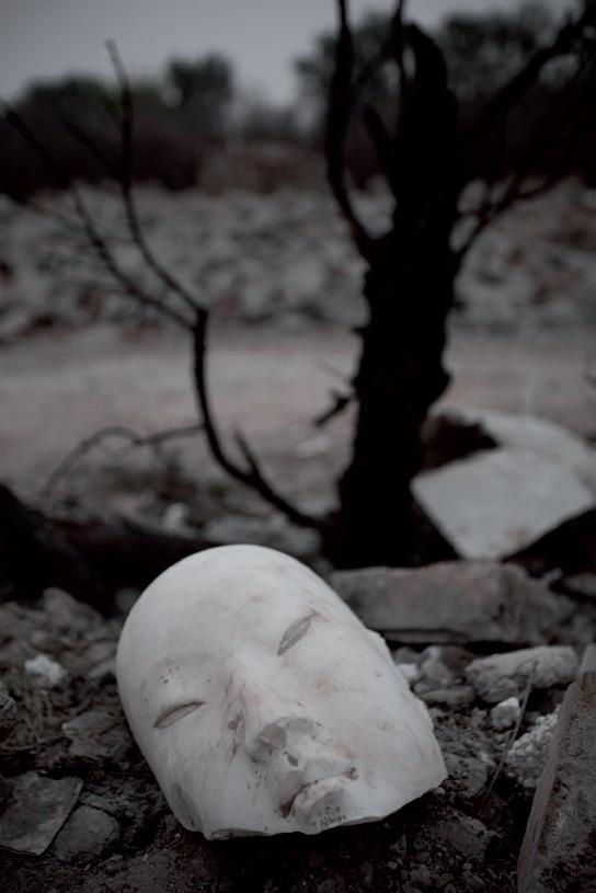 Sculptures  image