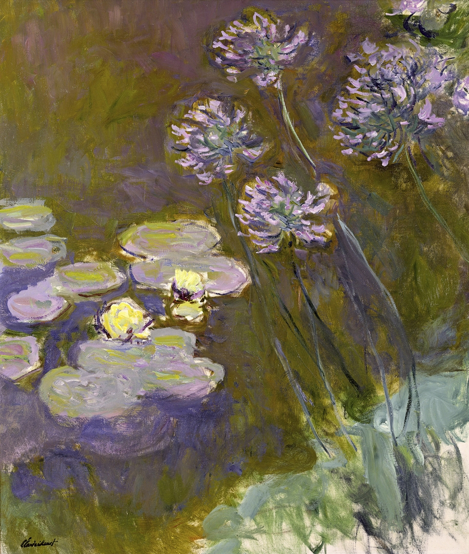 Waterlilies and Agapanthus  (Nymphéas et agapanthes) image