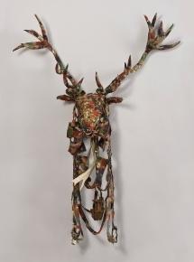 Cervus elaphus / red deer image