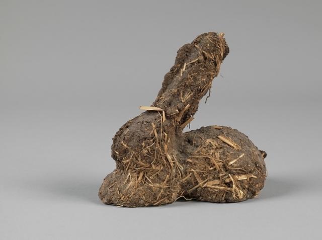 Bunny dropping bunny (Karnickelköttelkarnickel) image