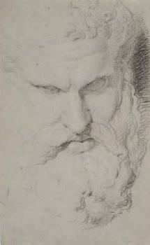 Sketch of the head of the Farnese Hercules image