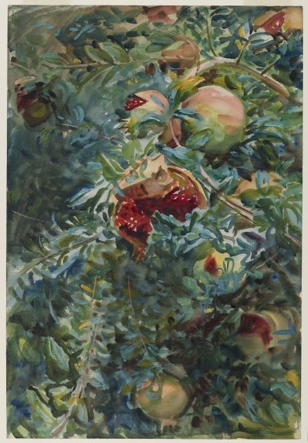 Pomegranates, 1908 image