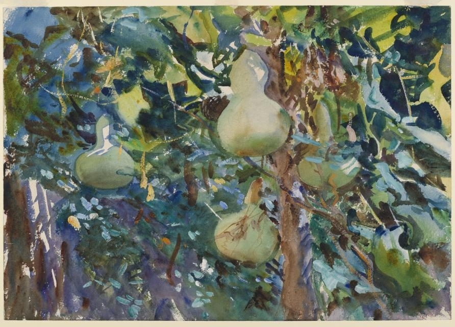 Gourds, 1908 image