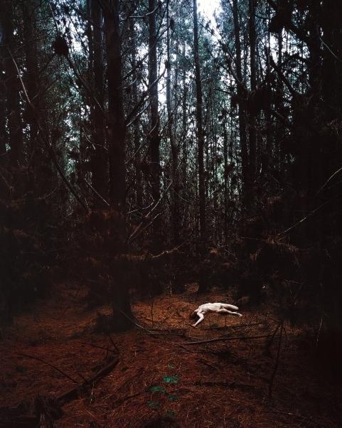 Untitled 4 image