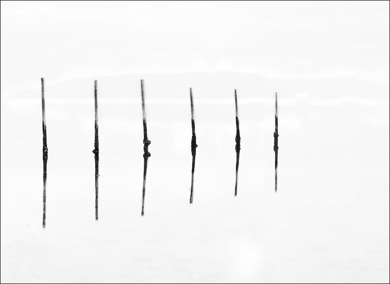 Poles I image