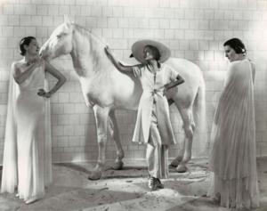 Edward Steichen and Art Deco Fashion image