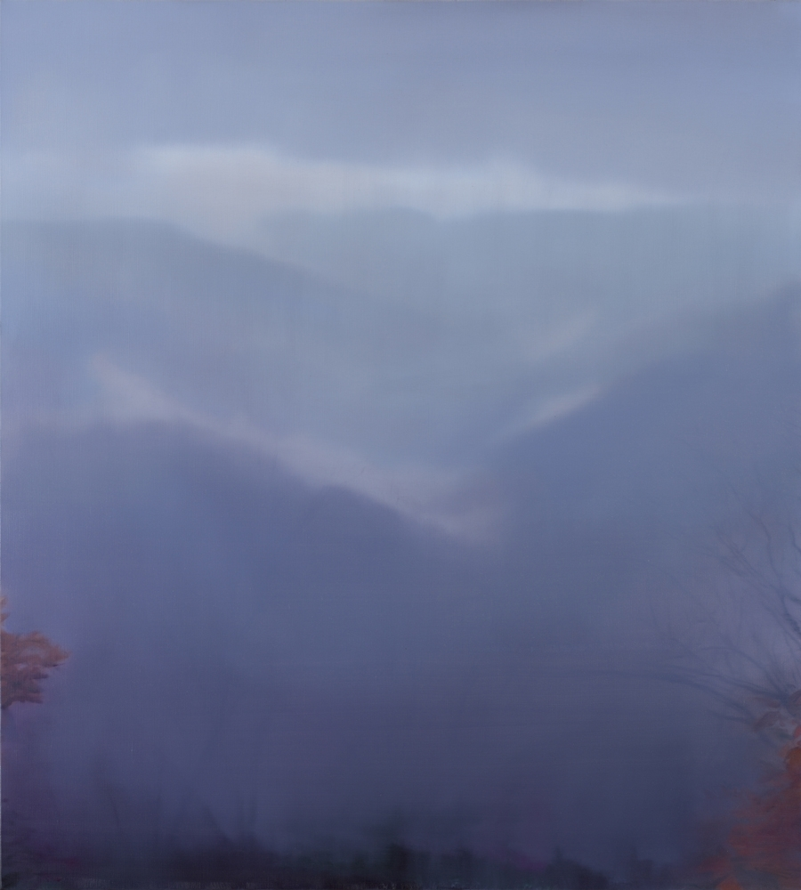 Landscape (Bald Head) no.1  2013 image