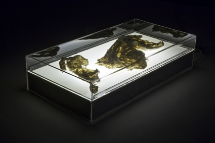Flesh 2013 25 x 60 x 30cm Perspex, Resin, x-ray box Photograph: Janelle Low  image