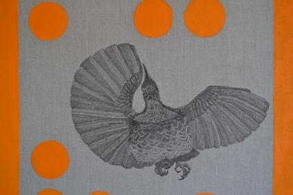 Bianca Durrant Ptiloris paradiseus Paradise Riflebird 2013 ink and synthetic polymer paint on linen 40 cm x 60cm Image courtesy of the artist  image
