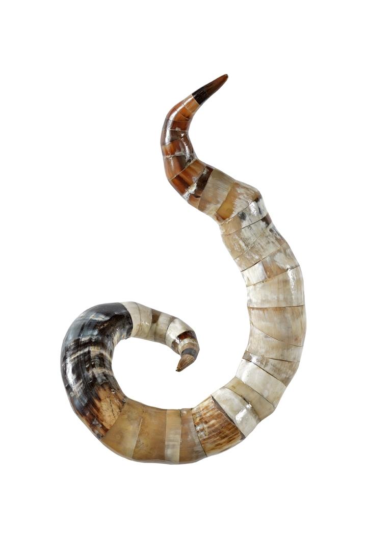 Spiralia II image