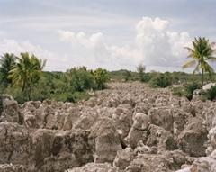 Kelvin Skewes, Freshly Mined Area Beside Nauru Regional Processing Centre 2013,Pigment Ink-jet print, 114 x 142 cm image