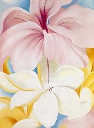 Hibiscus with Plumeria image