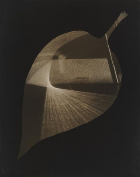 Leaf and Prism 1938 image