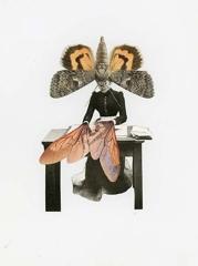 Janet Parker-Smith, 'Ordinary, Extraordinary' image
