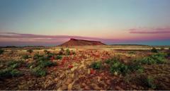 Brumby Mound #6  image