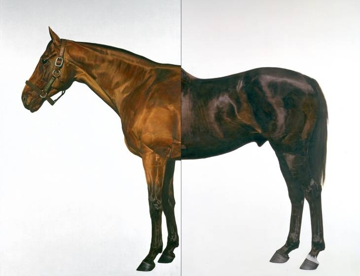 Half-Brother (Exit to Nowhere - Machiavellian)  image