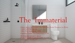 The Immaterial image