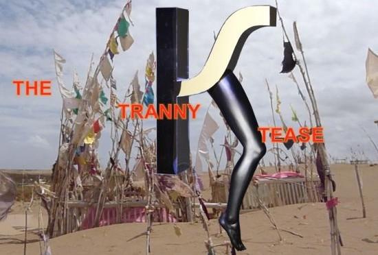 The Tranny Tease image