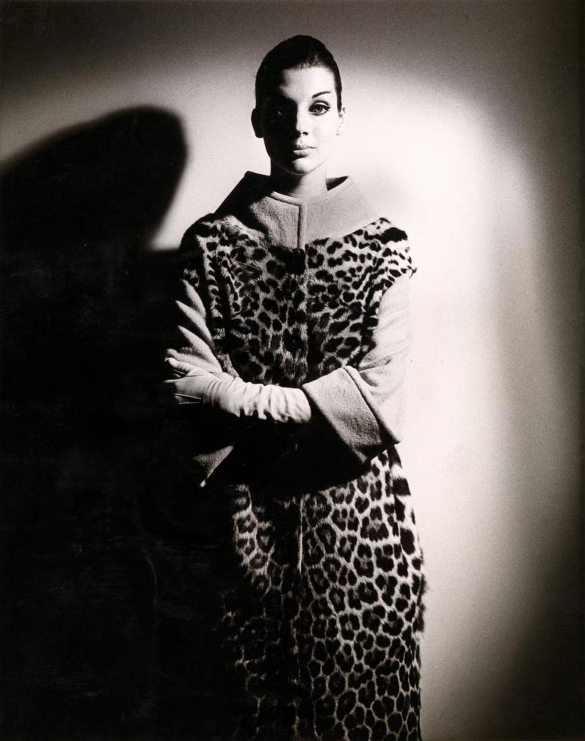 Henry Talbot 1960s Fashion Photographer image
