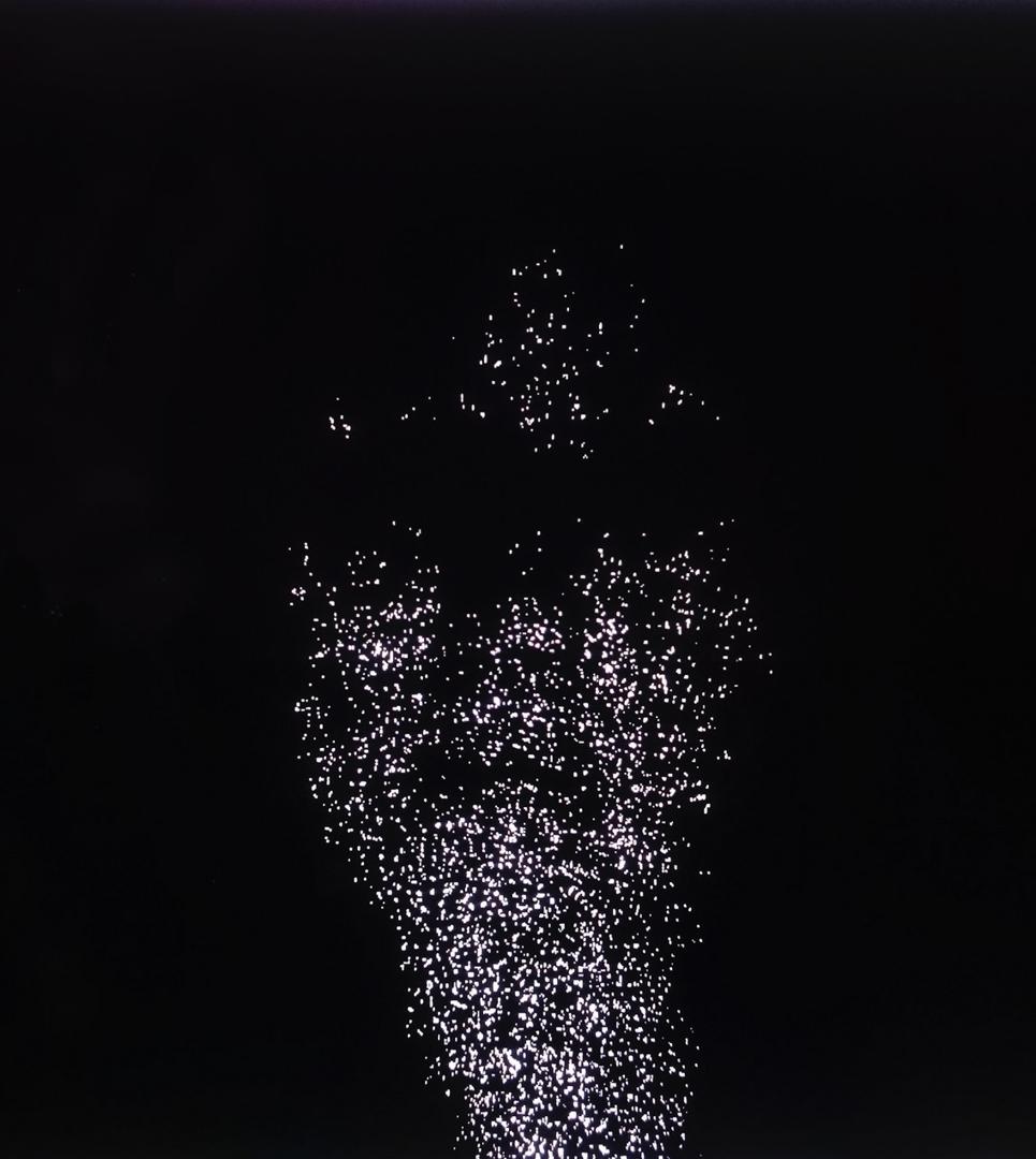 Moving Portrait image