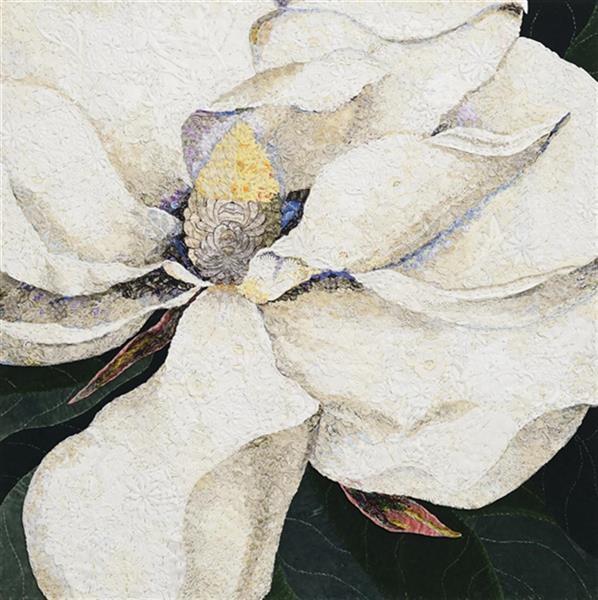 Magnolia georgiana  image