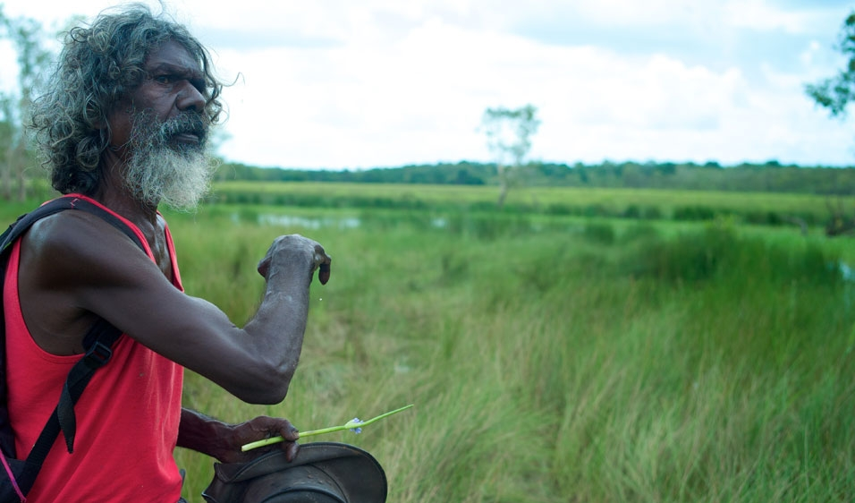 Another Country: As Told By David Gulpilil  image