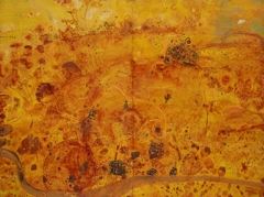 John Olsen  the you beaut country image