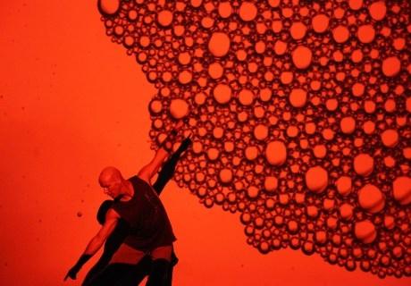 Blood On The Dance Floor Jacob Boehme And Ilbijerri Theatre Company image