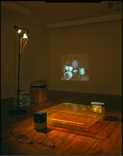 Disappearing Acts: Bruce Nauman, 1964-2018 image