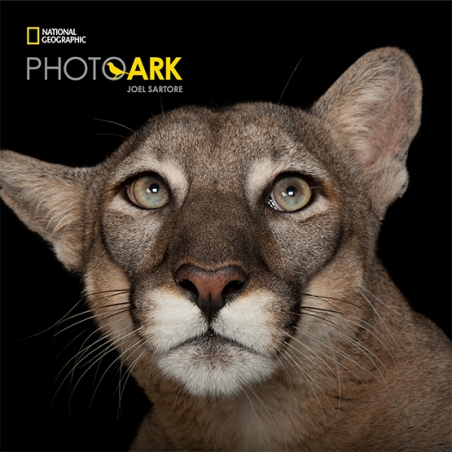 Friends of MGA exclusive event | Guided tour of Photo Ark at the Melbourne Zoo image