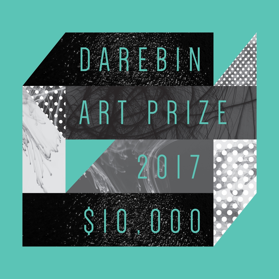Darebin Art Prize | 2017 image