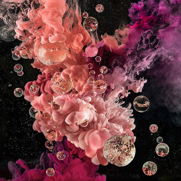 Janet Tavener - 'The Last Seed' image