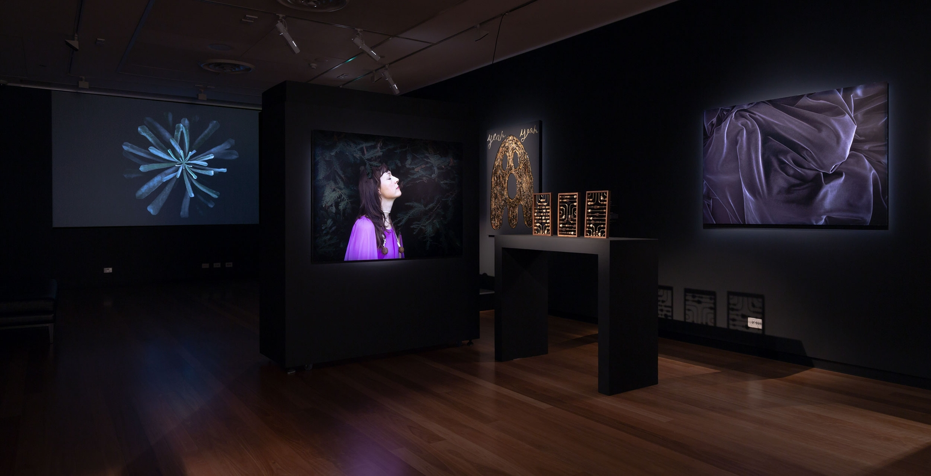 Hawthorn's Town Hall Gallery opens After Dark image