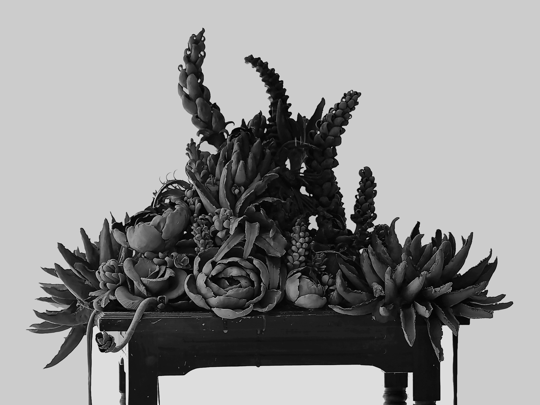 Ruth Li, 'Eden' 2018, ceramic installation, dimensions variable image