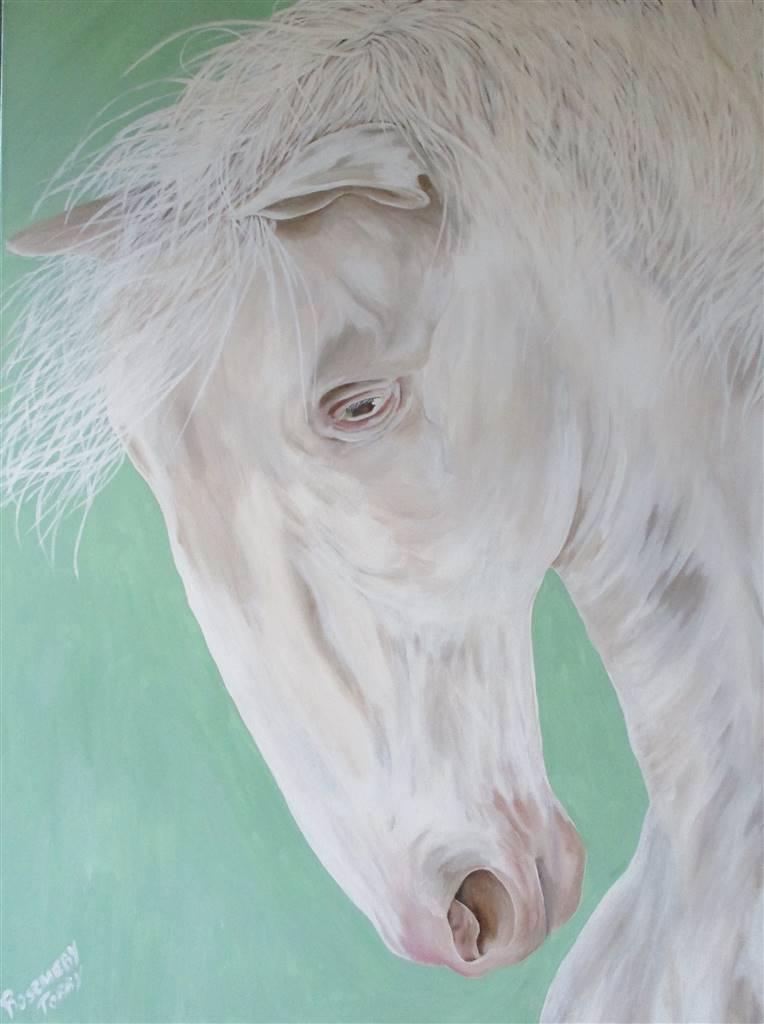 Rosemery Torres, White Horse, Acrylic on Canvas, 40'' x 30'' image