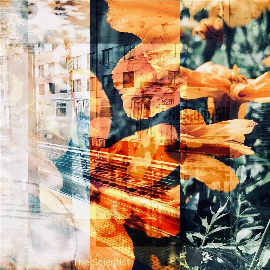 Stephanie Pitoy, The Knowing, No. 5, Digital C-Print, 12'' x 12'' image