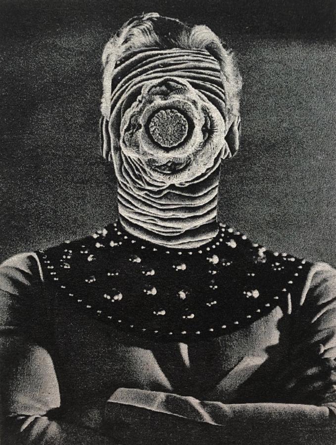 Tristan Chant, Parasite #2 image