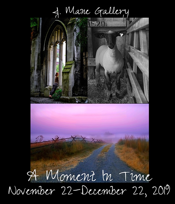 A Moment In Time 2019 image
