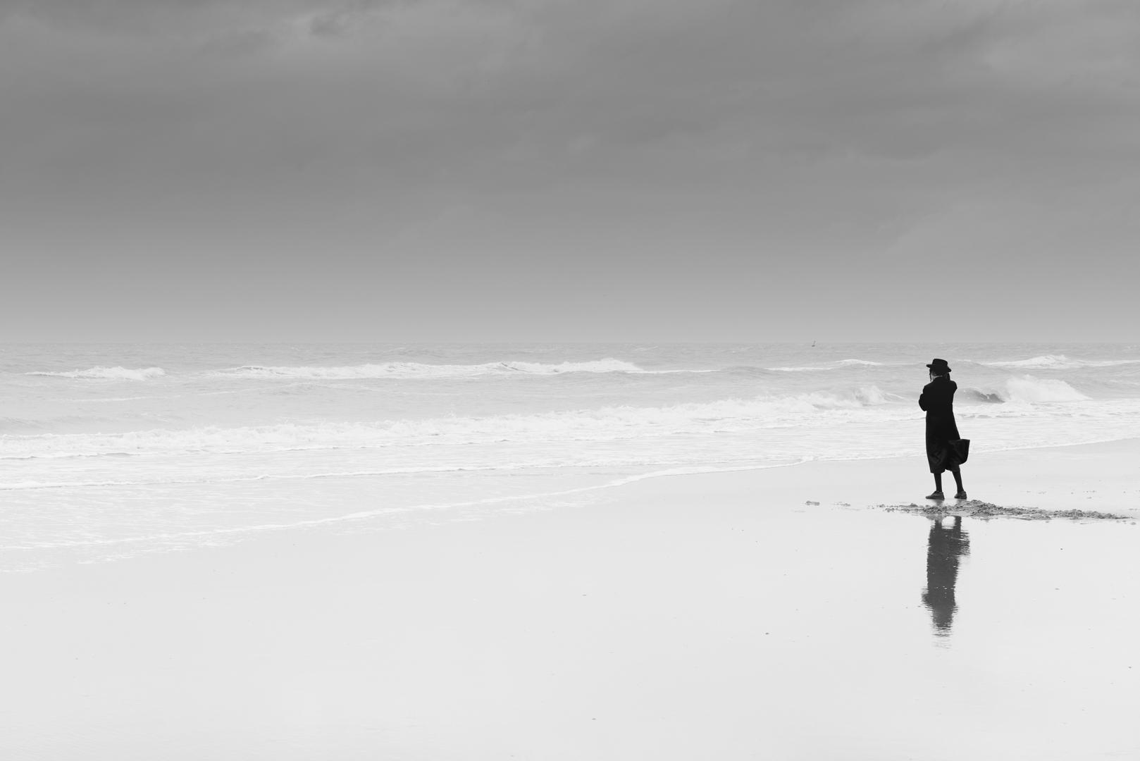 The Sea Watcher image
