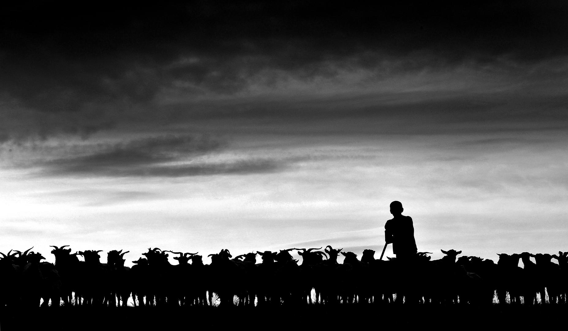 Shepherds From Transylvania by Istvan Kerekes image