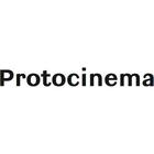 Max500_https-www-artsy-net-protocinema